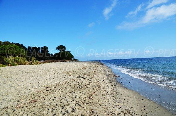 Lieu de baignade au nord de Figareto en Corse