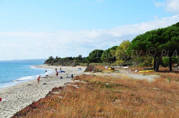 Camping à côté de la plage de Talasani - Corse