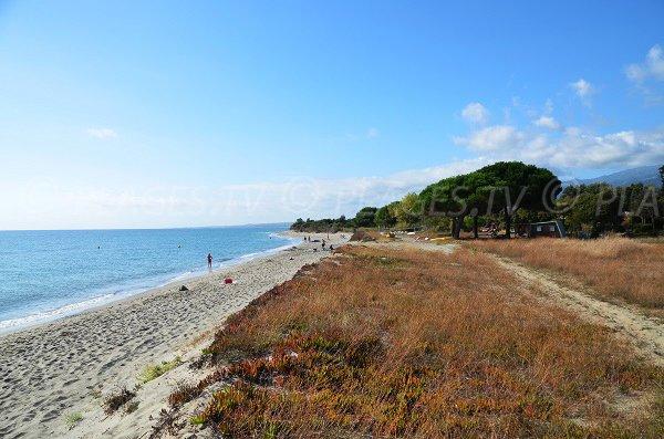 Plage de Talasani à Figareto en Corse