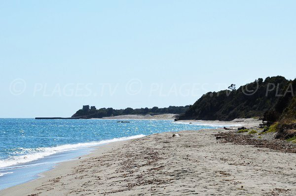 Photo de la plage de Tallone vue depuis la plage de Riva Bella