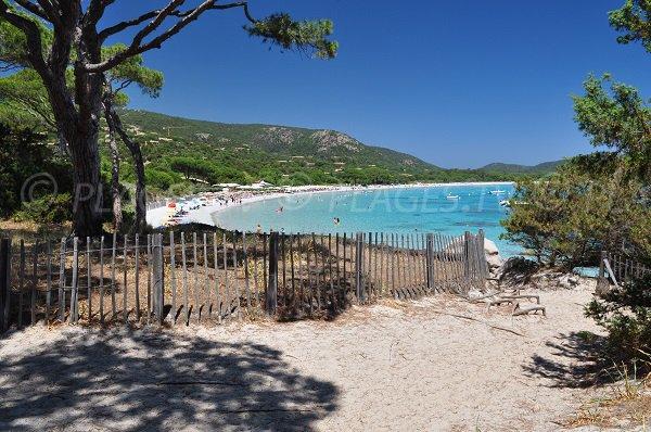 Tamaricciu beach in Corsica