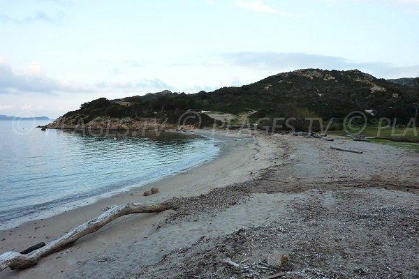 Photo of Tamaris beach in Bonifacio in Corsica