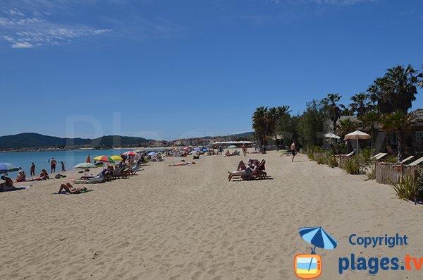 Bungalows sur la plage de Port-Grimaud
