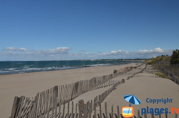 Photo de la plage de la Tamarissière à Agde