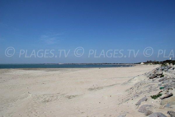 Spiaggia Tamarissière - Grau d'Agde - Francia