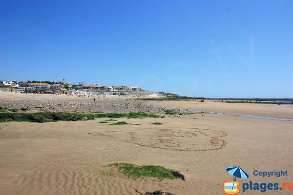 View on Chateau d'Olonne from Tanchet Beach