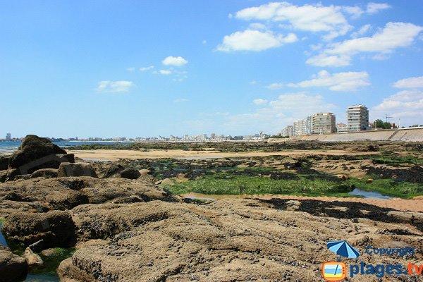 Rochers sur la plage du Tanchet côté Sables d'Olonne