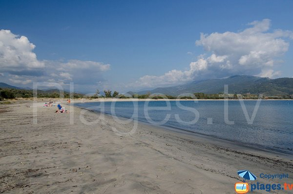 Taravo beach in Porto Pollo - Corsica
