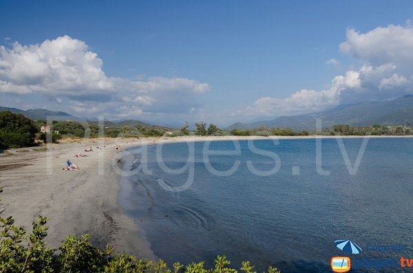 Photo of Taravo beach in Porto Pollo - Corsica
