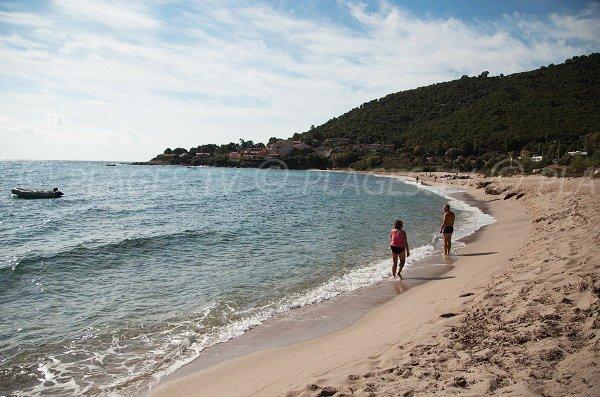 Spiaggia di Tarco in Corsica