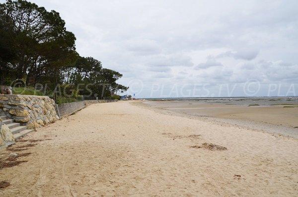 Photo de la plage de Taussat entre le port de Taussat et le club nautique