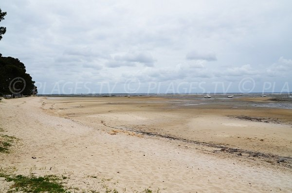 Photo de la plage de Lanton au niveau du port de Taussat