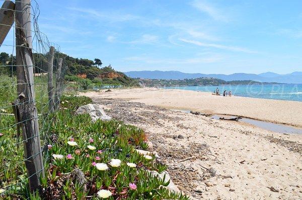 Plage à Coggia à côté de la plage de Santana