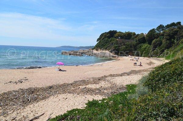 Plage de Temuli à Coggia dans le golfe de Sagone en Corse