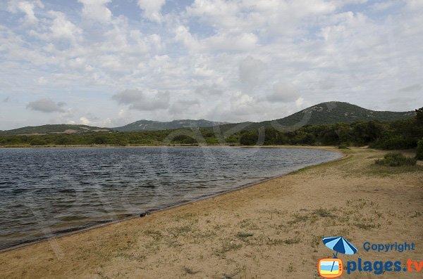 Photo de la plage de Tenuta à Figari