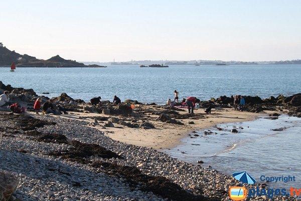 Photo de la plage de Térenez à Plougasnou