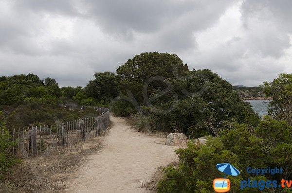 Sentier pour la crique dans le golfe de Ventilegne - Figari