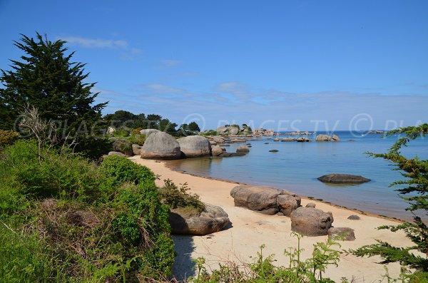 Belle plage sur l'Ile Renote à Trégastel
