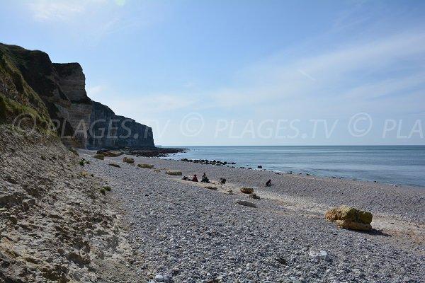 Photo de la plage du Tilleul proche d'Etretat