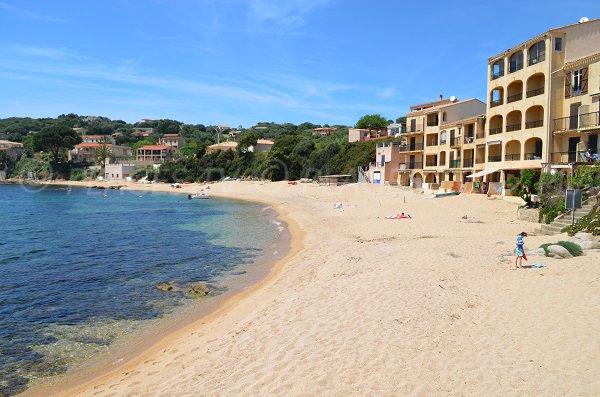 Photo de la plage de Tiuccia en Corse