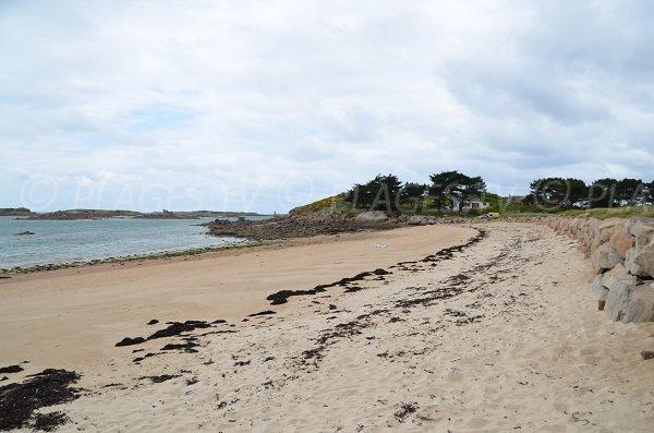Photo de la plage de Toeno à Trébeurden