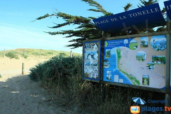 Sentier d'accès à la plage de la Tonelle - St Jean de Monts