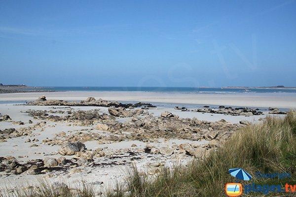 Plage de Toul an Ouch à Plougoulm - marée basse