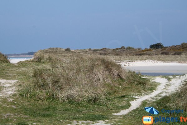 Dunes de Toul an Ouch - Plougoulm