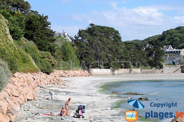Photo de la plage de Toul ar Vilin à Saint-Michel-en Grève
