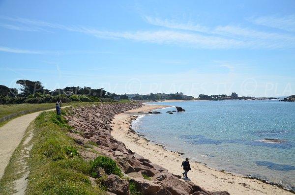 Sentier sur l'ile de Renote en Bretagne