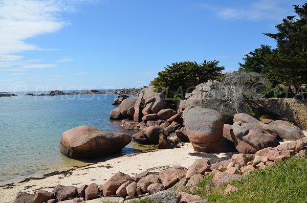 Rochers de la côte de Granit Rose à Trégastel sur l'ile Renote