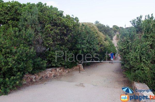 Route d'accès à la plage de la tour de Fautea