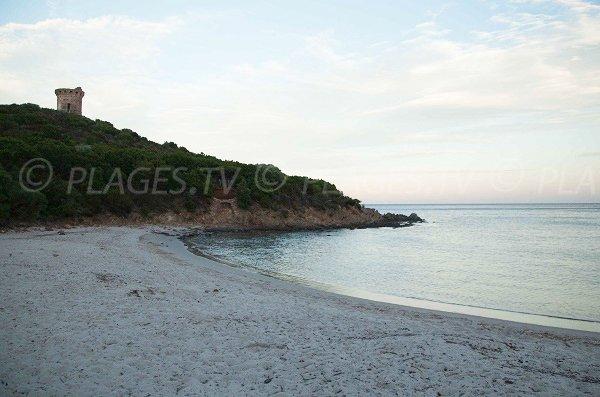 Photo de la plage de la tour génoise de Fautéa - Corse