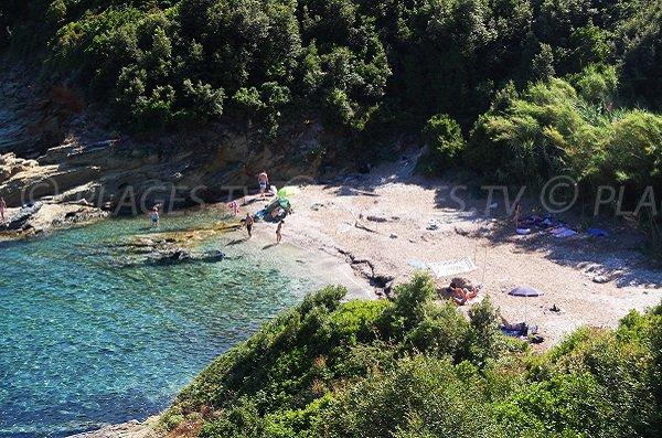 Confidential cove in cap Corse next to Pietracorbara