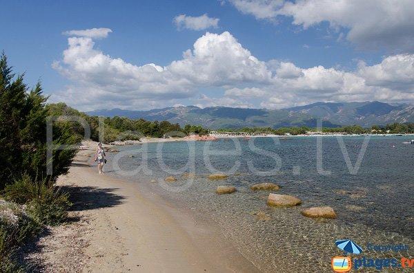 Spiaggia a sud della spiaggia di St Cyprien - Corsica