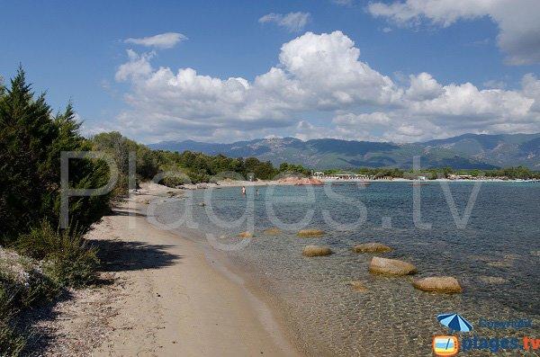 Beach near Tour of Cala Rossa - Corsica