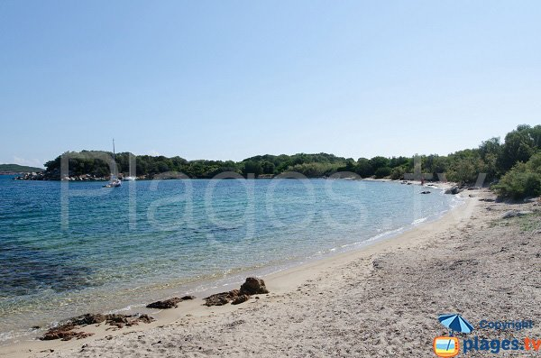 Photo of Tour beach in the St Cyprien bay - Corsica