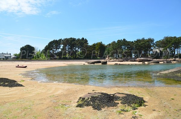 Tourony beach at high tide in Trégastel