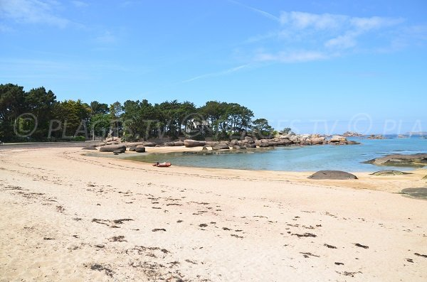 Tourony beach in Trégastel in Brittany in France