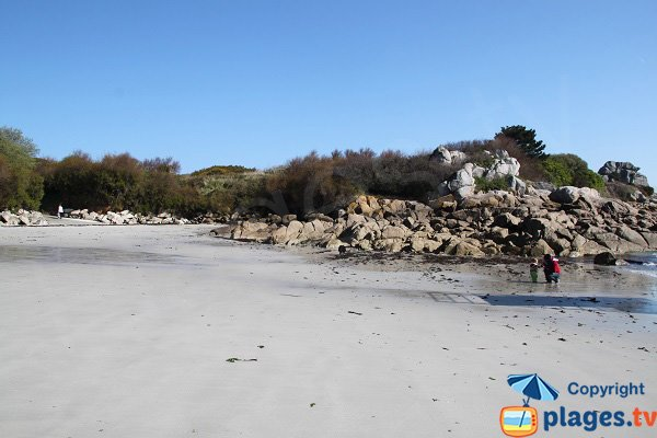 Traon Erc'h beach in Roscoff in Brittany