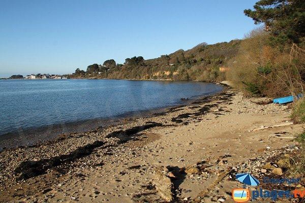 Photo de la plage de Traonazen à Plougasnou