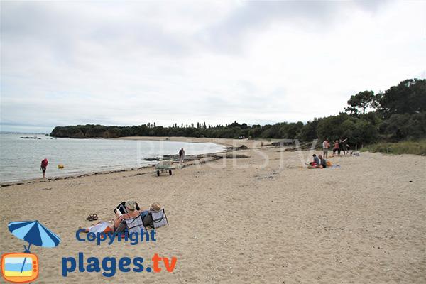 Plage de sable à proximité des campings d'Ambon