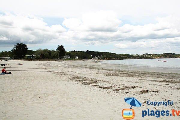 Photo de la plage de Trez Hir à Plougonvelin