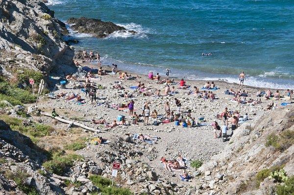 Photo de la plage du Troc à Banyuls sur Mer