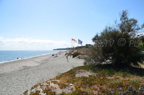 Photo of naturist beach in Corsica - Linguizzetta