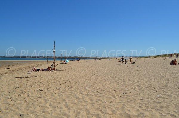 Photo de la plage de Trousse Chemise à Les Portes en Ré