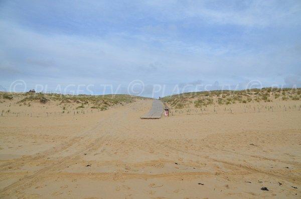 Dune and access to Truc Vert beach in Cap Ferret