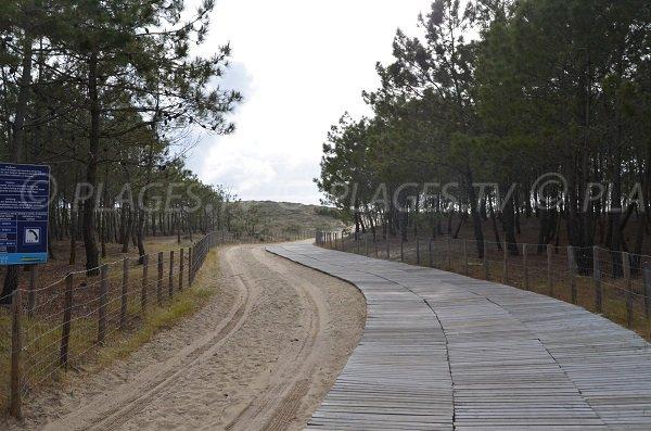 Truc Vert beach and access - Cap Ferret