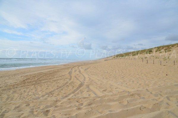 Truc Vert beach in Cap Ferret in France