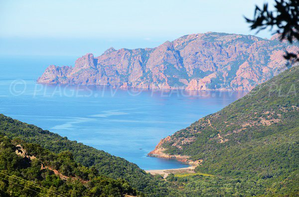 Photo of Tuara beach and view on the Girolata gulf - Corsica